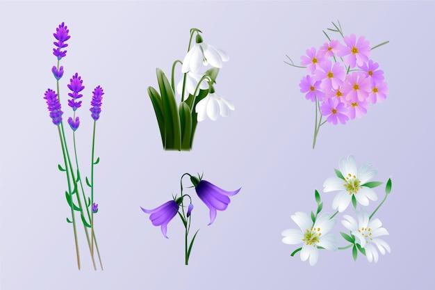 Реалистичная весенняя цветочная коллекция
