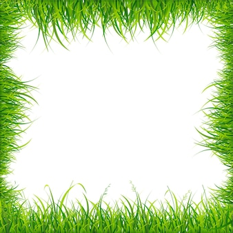 Realistic square green grass frame. vector illustration