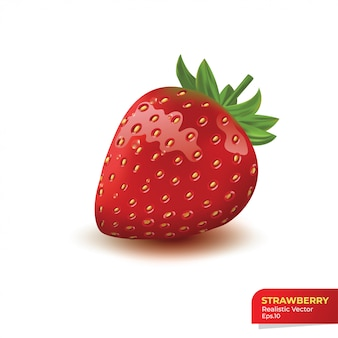 Realistic strawberry on white