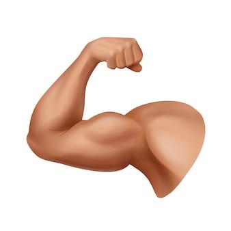 흰색 배경에 고립 된 현실적인 강한 남자의 팔