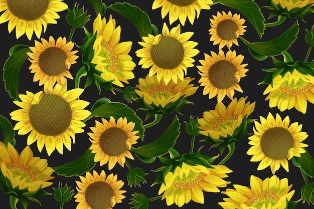 Realistic sun flowers background