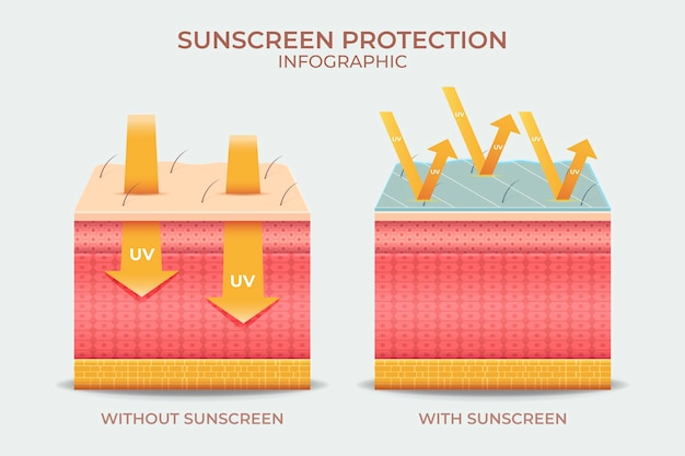 현실적인 태양 보호 infographic
