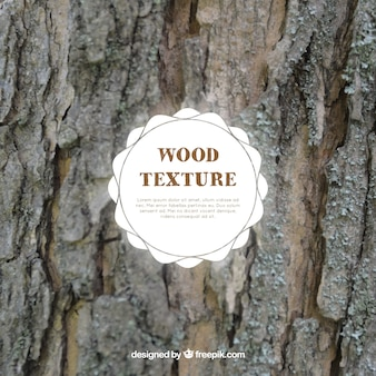 Realistic texture of tree trunk