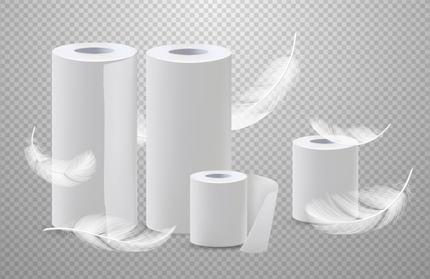 Realistic toilete paper and paper towels with feathers