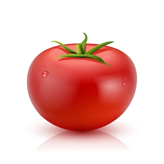 Realistic Tomato Isolated