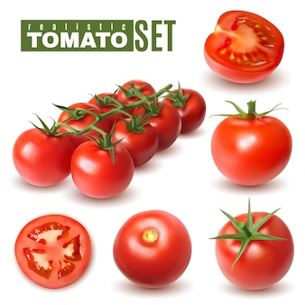 Realistic tomato set of isolated images with single tomato fruits and groups with shadows and text
