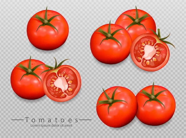 Realistic tomatoes collection