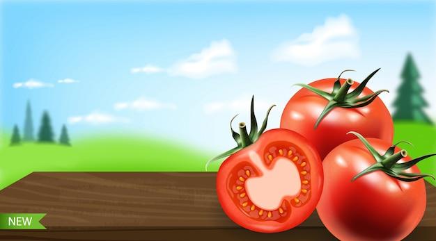 現実的なトマトの分離、新鮮な製品、ベジタリアン料理、美しい風景の背景、イラスト