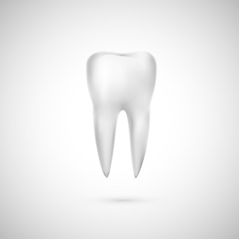 Realistic tooth illustration. dental care and teeth restoration. medicine icon.