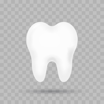 Realistic tooth isolated.