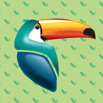 Realistic toucan