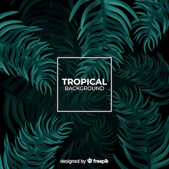 Realistic tropical background