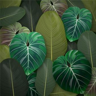 现实热带叶子背景