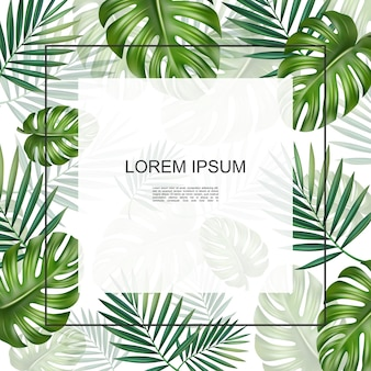 Realistic tropical plants floral card with frame for text monstera and palm natural leaves  frame