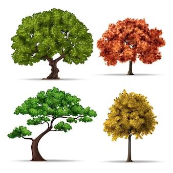 リアルなタイプの木のコレクション