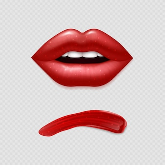 Realistic vector lipstick smear and woman lips illustration