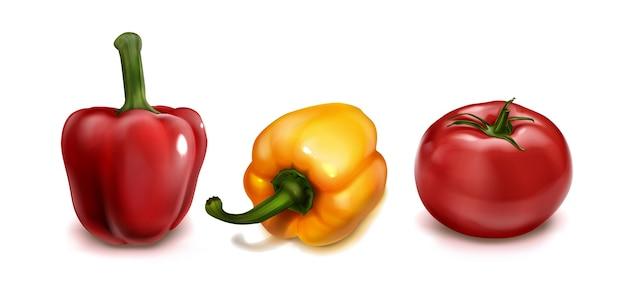 リアルな野菜の上面図