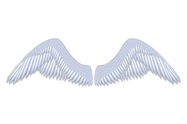Realistic white angel wings isolated vector illustration