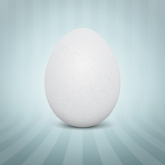 Realistic white egg