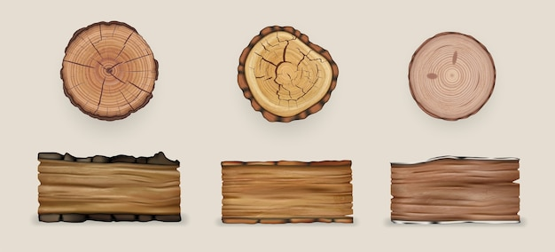 Realistic wood set collection illustration