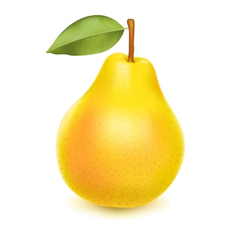 Realistic yellow pear with leaf