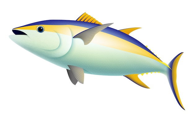 Реалистичная рыба из тунца