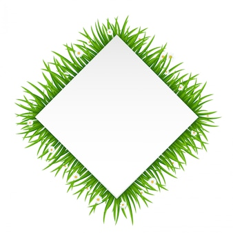 Rectangle frame made of grass or fur isolated on white
