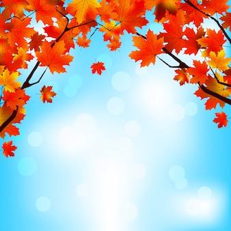明るい空を背景に赤と黄色の葉。
