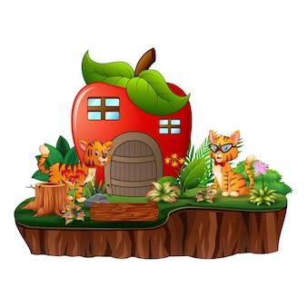 섬에 고양이 두 마리와 함께 빨간 사과 집