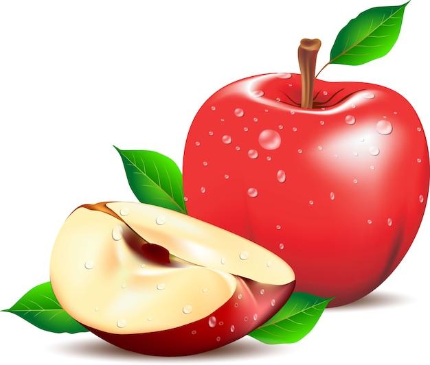 녹색 나뭇잎과 사과 슬라이스 빨간 사과