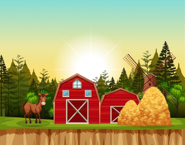 Red barn and horse scene