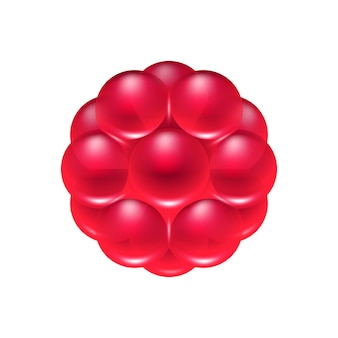 Red berry jelly candy icon.