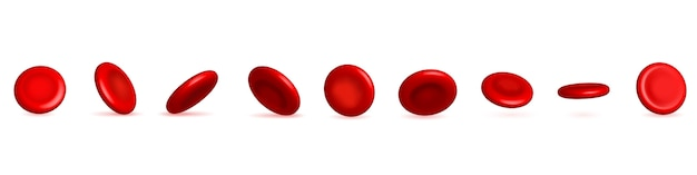 Red blood cells stream, medical erythrocyte.