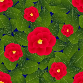 Red camellia flower on blue background