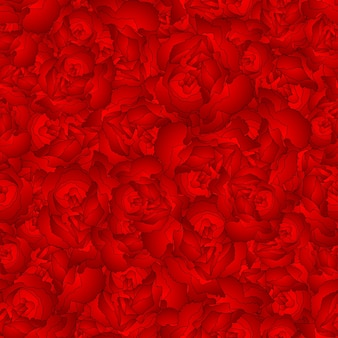 Red carnation flower seamless background