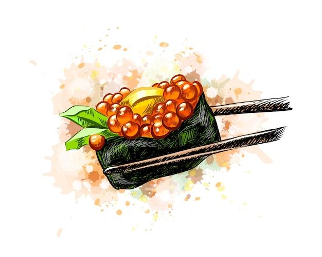 水彩のスプラッシュから赤キャビア軍艦寿司、手描きのスケッチ。塗料のイラスト