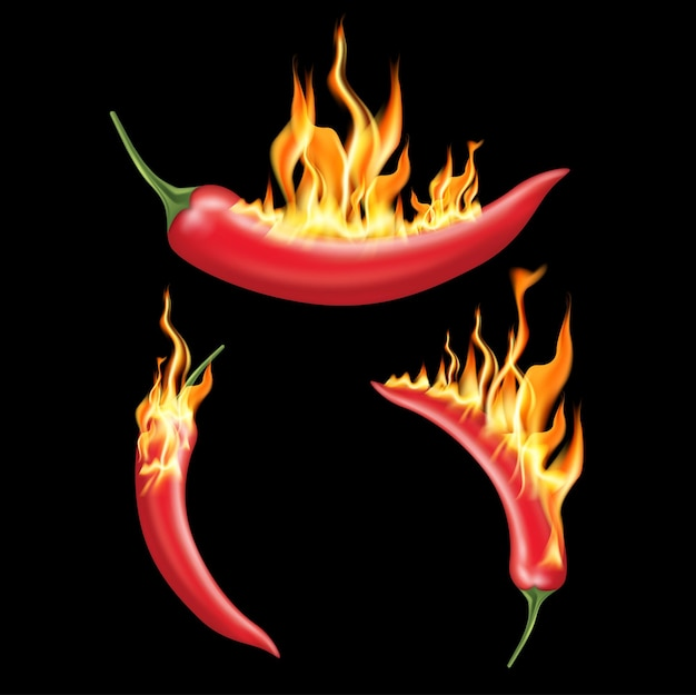 Red chili pepper with fire on solid color background.