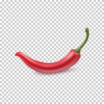 Red chili pepper.  for your projects.