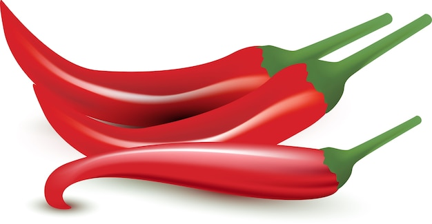 Red chilly or pepper