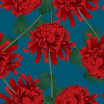 Red chrysanthemum flower on indigo blue background