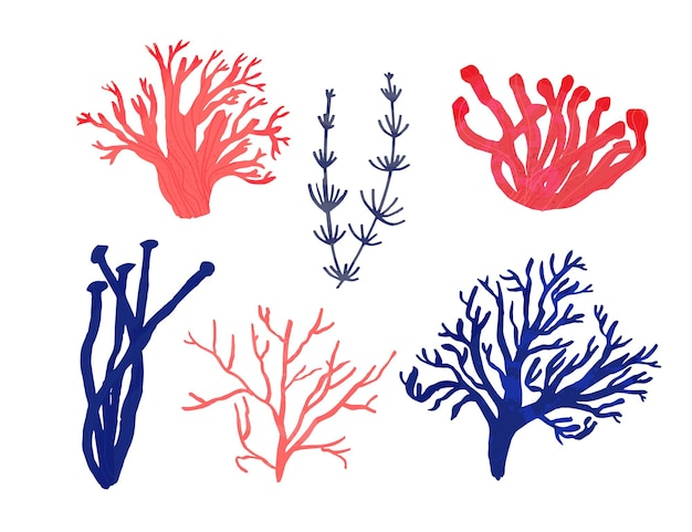 Red corals and algae, blue seaweeds. hand drawing of different ocean underwater life isolated on white background. vector set of illustrations.