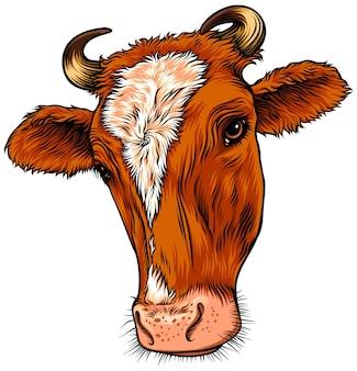 Red cow animal head illustration