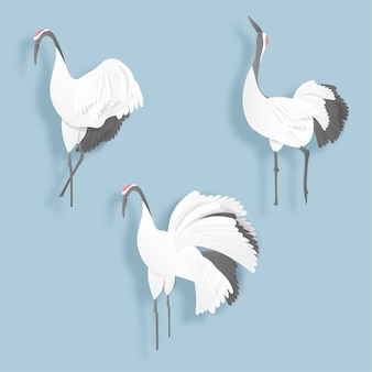 Red crown crane in paper cut style vector illustration
