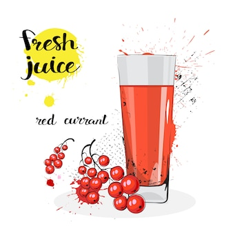 Red currant juice fresh hand drawn watercolor fruit and glass on white background
