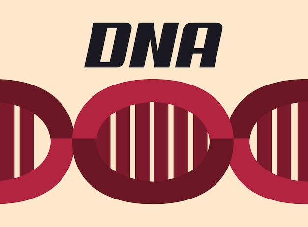 Red dna molecule structure