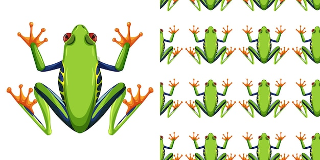 Red-eyed tree frog isolated on white and seamless