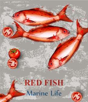 Red fish watercolor vintage background