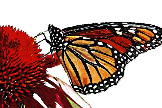 Red flower and colorful butterfly watercolor