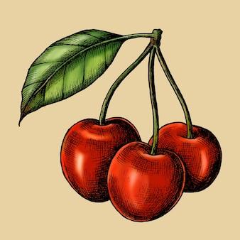 Red fresh cherries on beige background vector