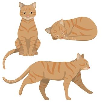 さまざまなポーズの赤毛の猫。漫画のスタイルの美しいペット。